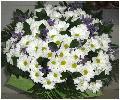 букет из летних цветов