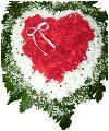 Яркое, праздничное сердце из 19 красных гвоздик, 5 кустовых белых хризантем сорта зембла, гипсофиллы и зелени, украшенное флористическими элементами.